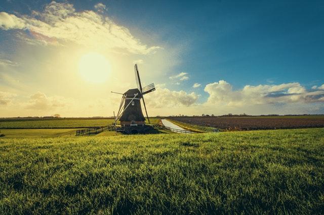 Przewozy Polska Holandia