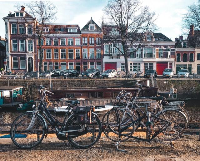 Busy do Holandii z Polski